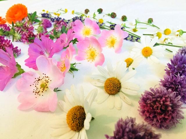 Essbare-Blüten